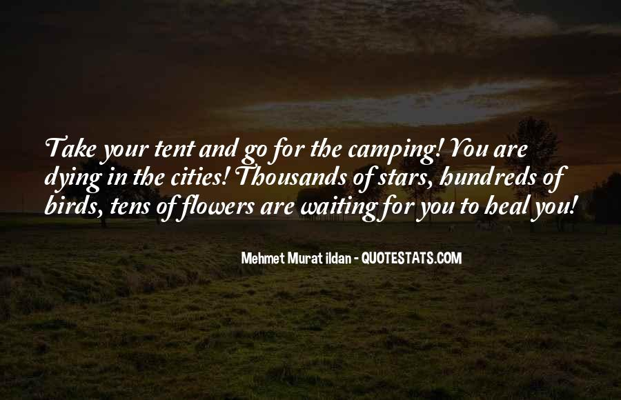 Quotes About Dying Stars #1042948