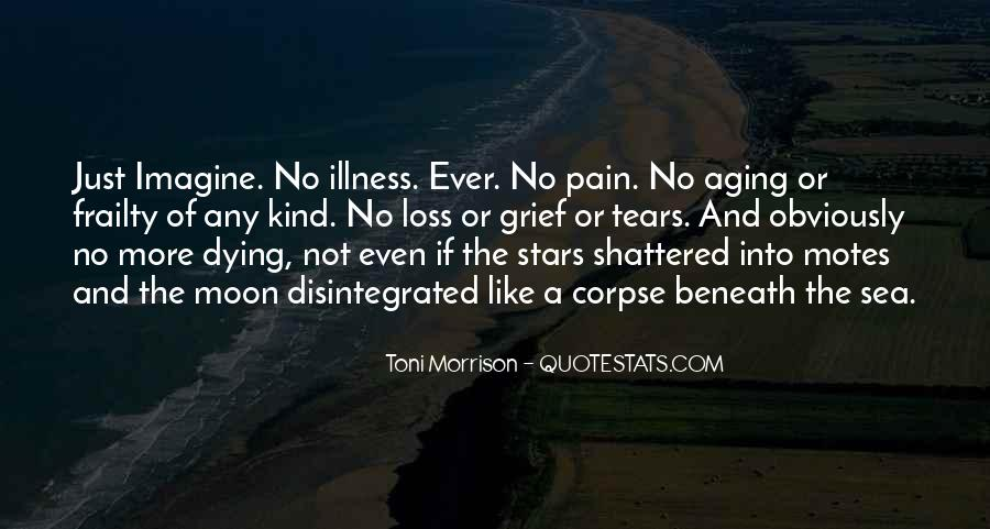 Quotes About Dying Stars #1473688