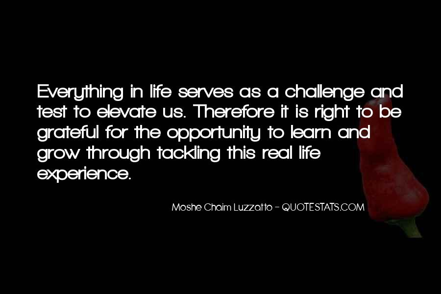Quotes About Opportunity To Learn #17896