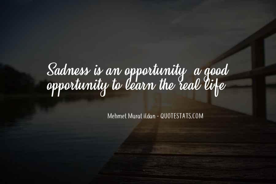 Quotes About Opportunity To Learn #668844