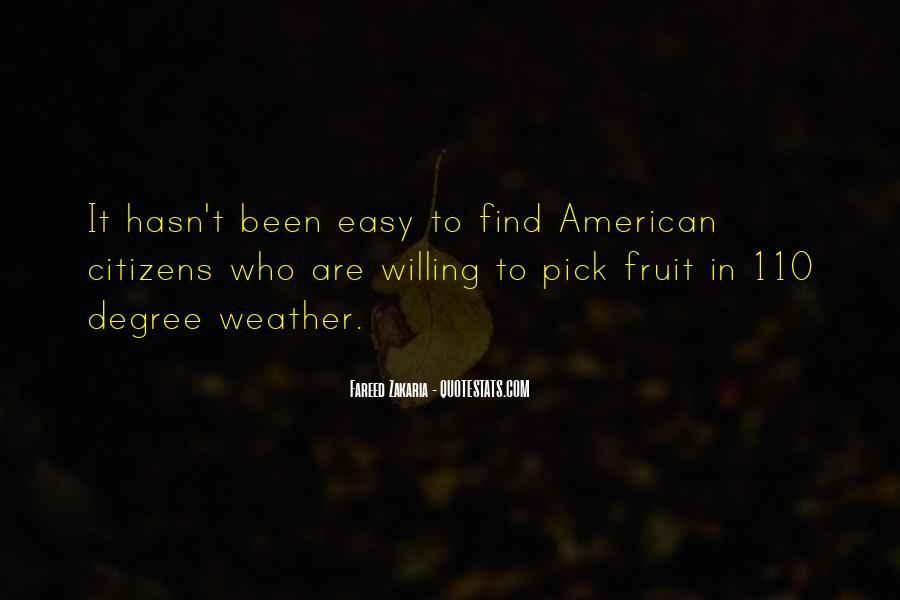 Quotes About The American Dream In A Raisin In The Sun #259006