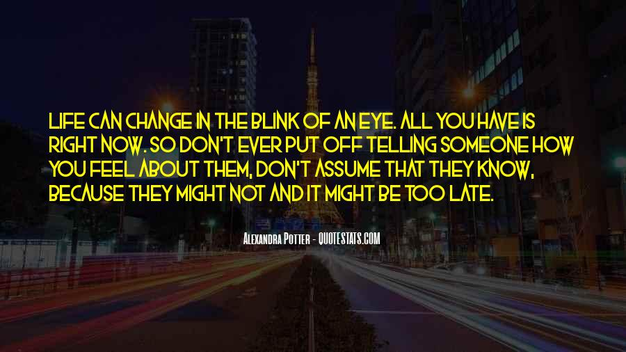 Quotes About Change In The Blink Of An Eye #480751