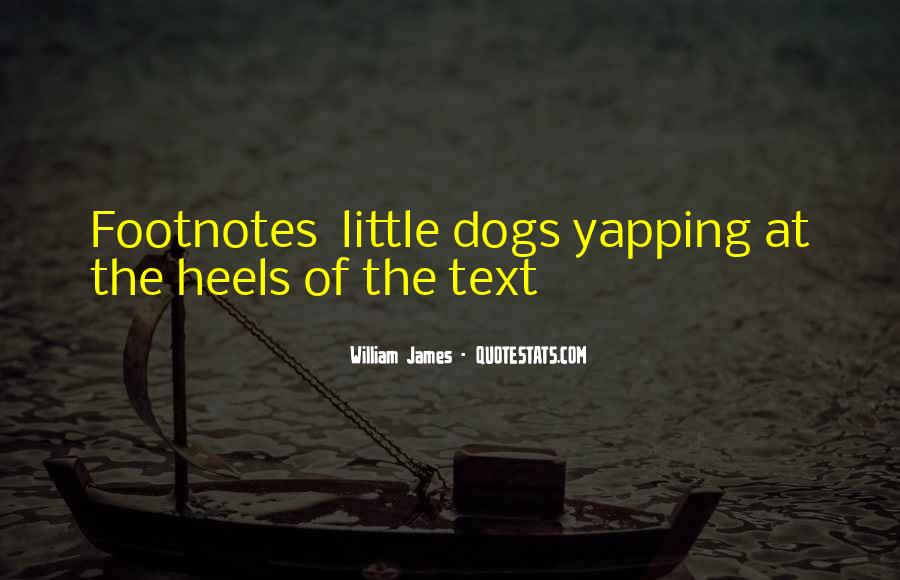 Quotes About Little Dogs #1640457
