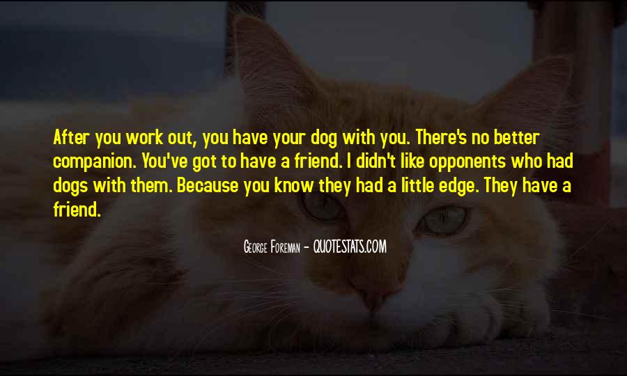 Quotes About Little Dogs #314997