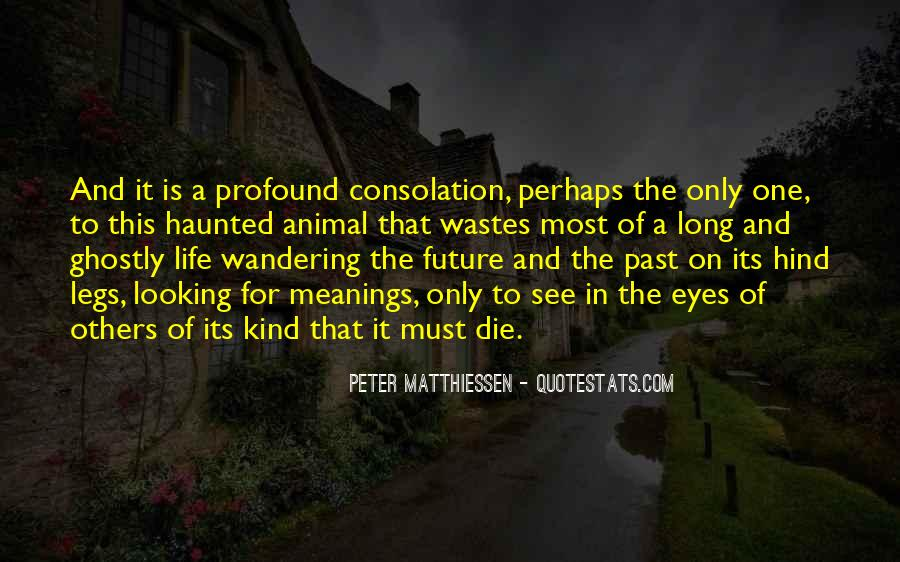 Quotes About Meaning Of Life And Death #1024238