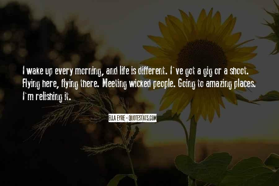 Quotes About Flying And Life #1008894