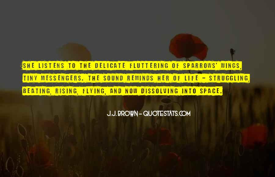 Quotes About Flying And Life #1634069
