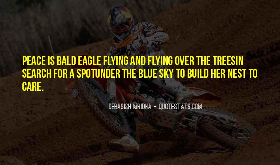 Quotes About Flying And Life #1638943