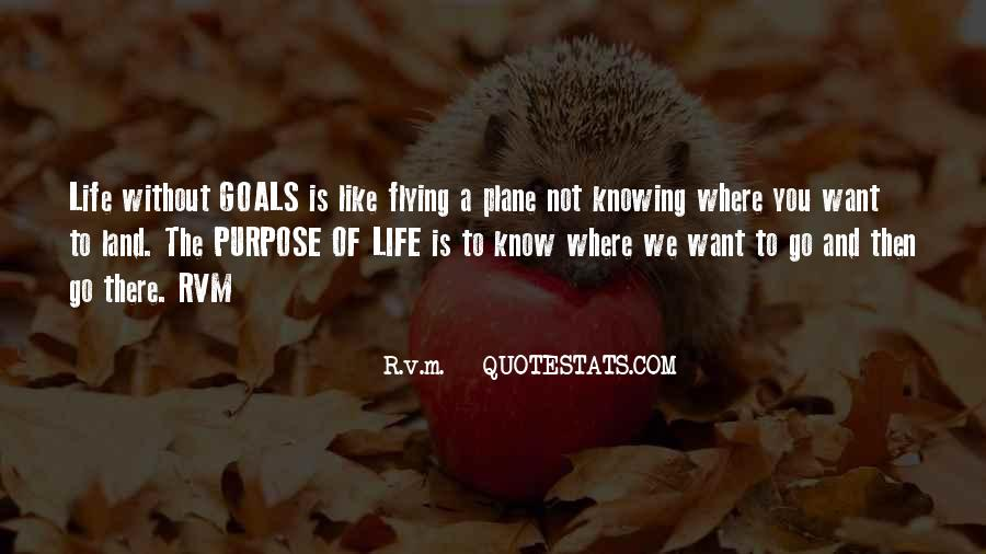 Quotes About Flying And Life #1769330