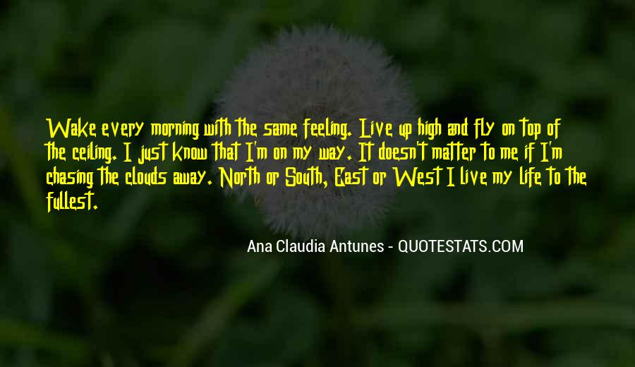 Quotes About Flying And Life #768141