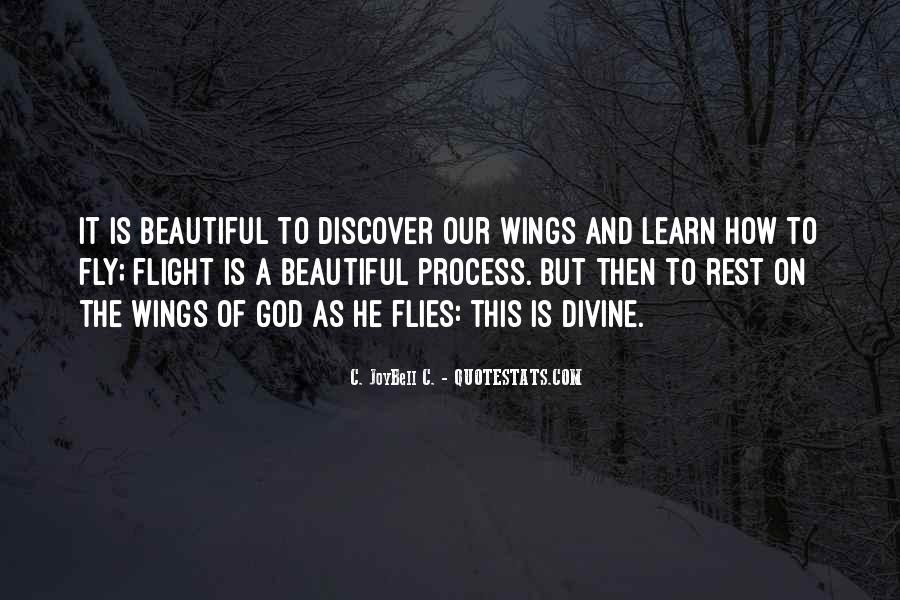 Quotes About Flying And Life #803916