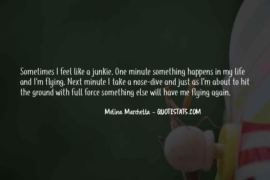 Quotes About Flying And Life #855998