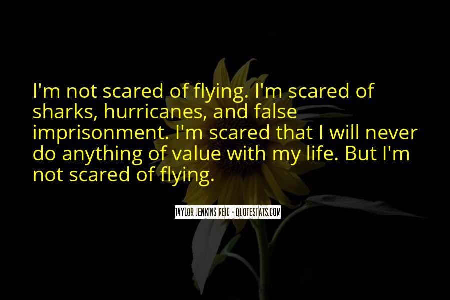 Quotes About Flying And Life #884041