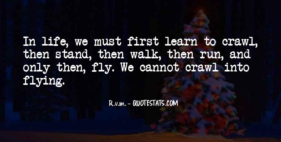 Quotes About Flying And Life #93514
