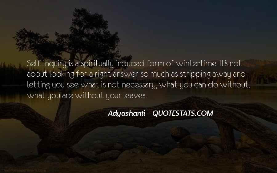 Quotes About Looking For Answers #1080948