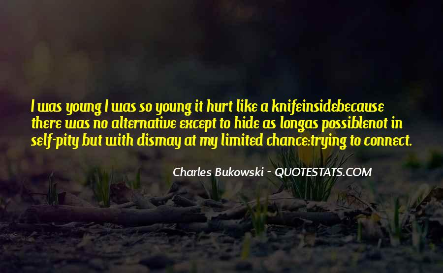 Quotes About Being Hurt On The Inside #869059