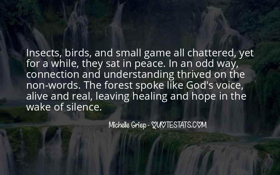 Quotes For Peace And Understanding #580511