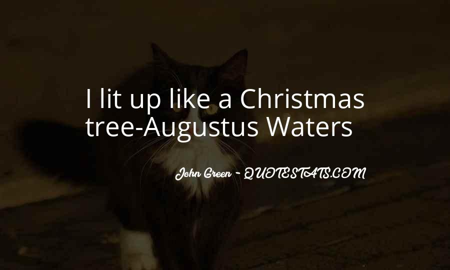 Lit Up Like A Christmas Tree.Top 100 Quotes On Christmas Tree Famous Quotes Sayings
