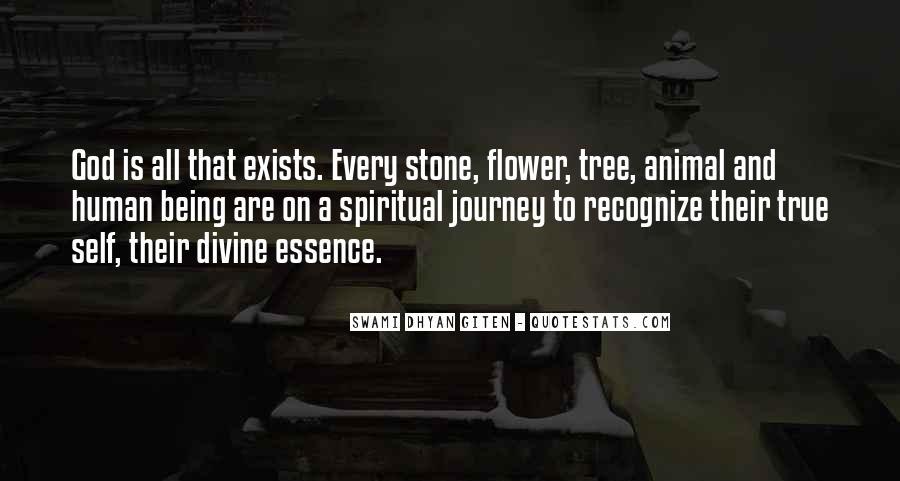 Quotes On Human Spirituality #1070369