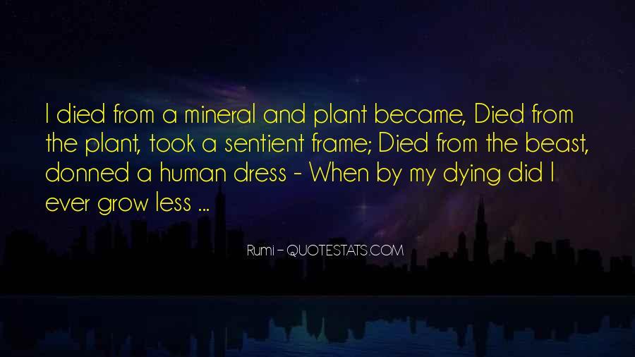Quotes On Human Spirituality #474146