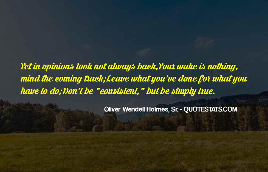 Quotes On Looking Back To Look Forward #1233206