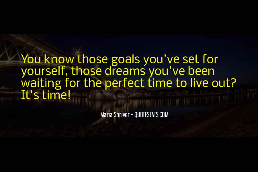 Quotes About Not Waiting For The Perfect Time #739491