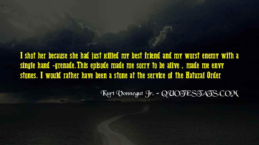 Quotes On Sorry To Best Friend #875231