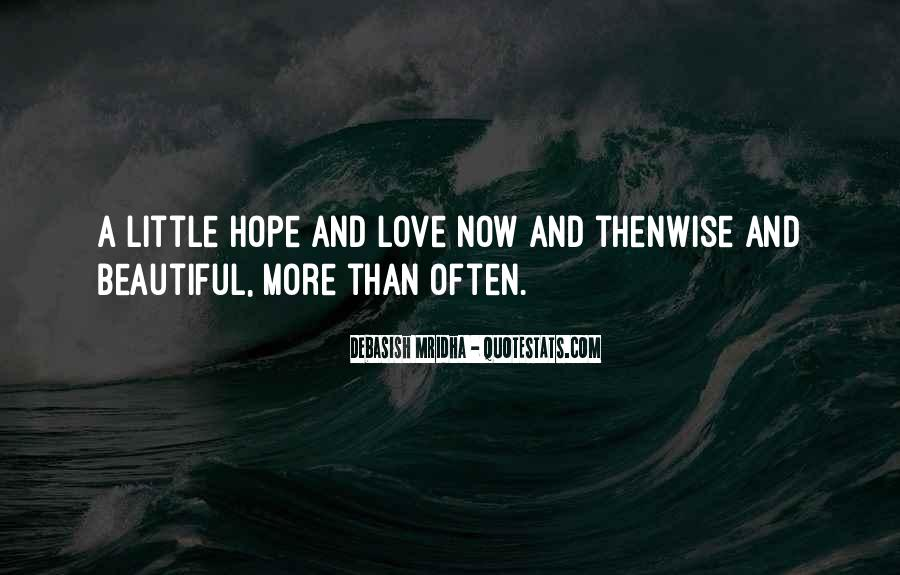 A Little Happiness Quotes #102890