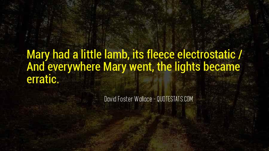 A Little Light Quotes #355708