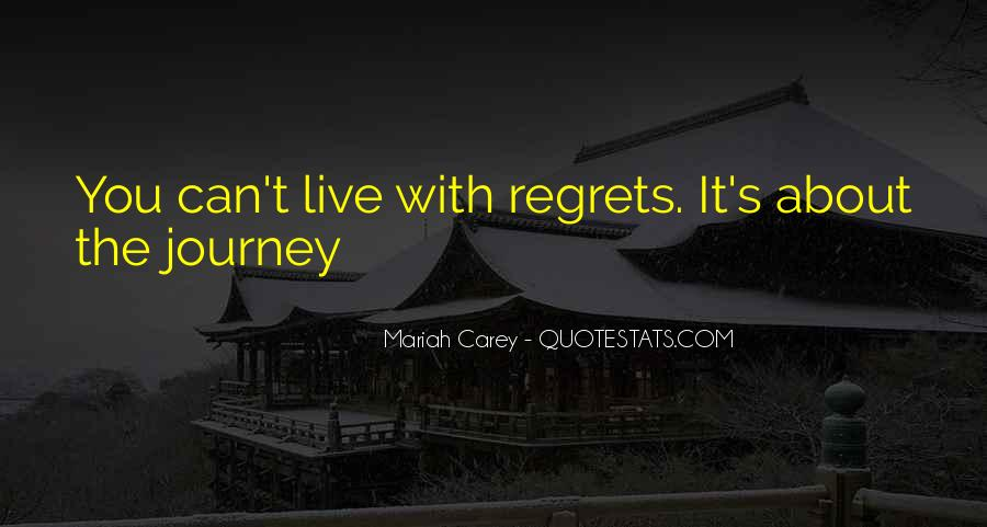 About The Journey Quotes #15377
