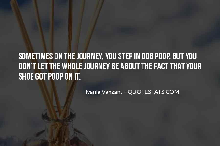 About The Journey Quotes #401468
