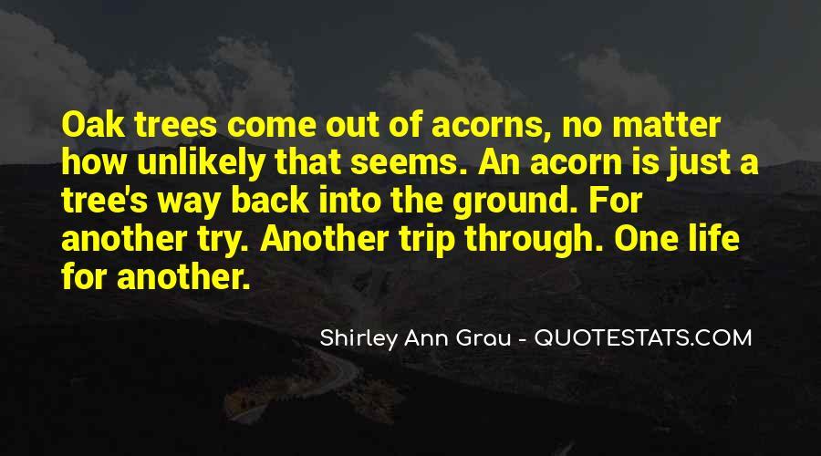 Acorn And Oak Tree Quotes #756160