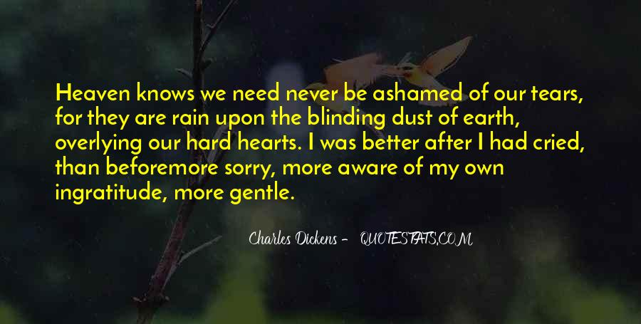 After The Tears Quotes #780750