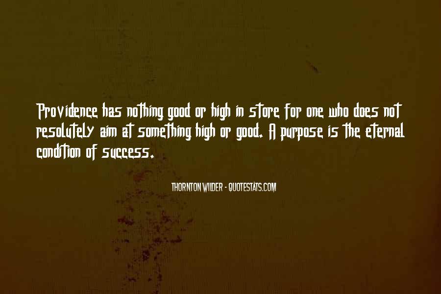 Aim For Success Quotes #9329