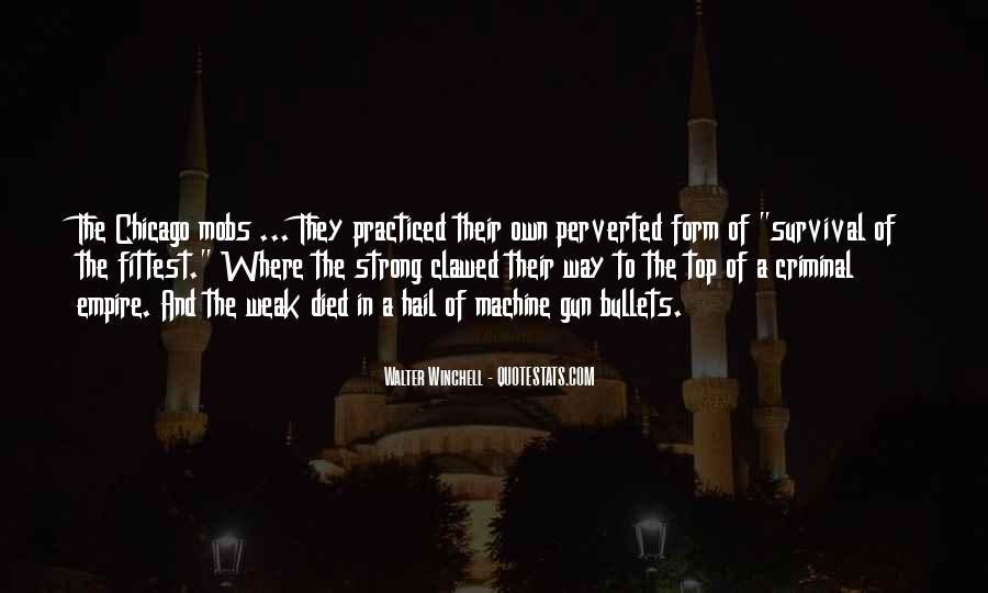 All Top Gun Quotes #253611
