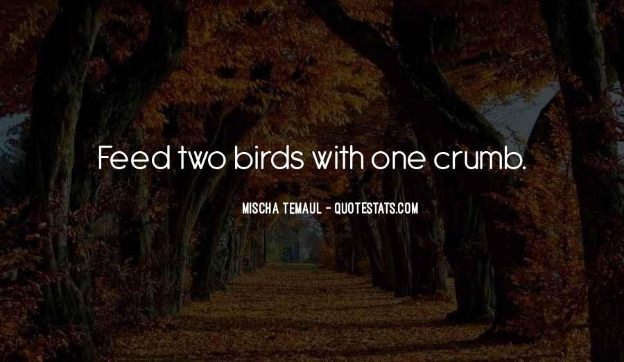 Animals Inspirational Quotes #635628