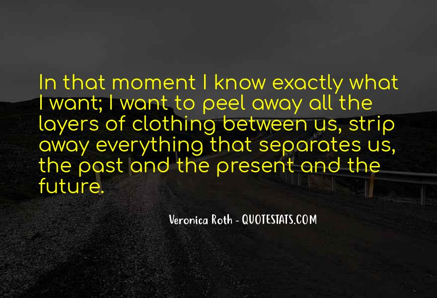 Anish Kapoor Cloud Gate Quotes #236133