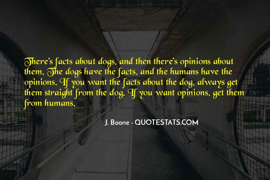 Armando Guebuza Quotes #505385