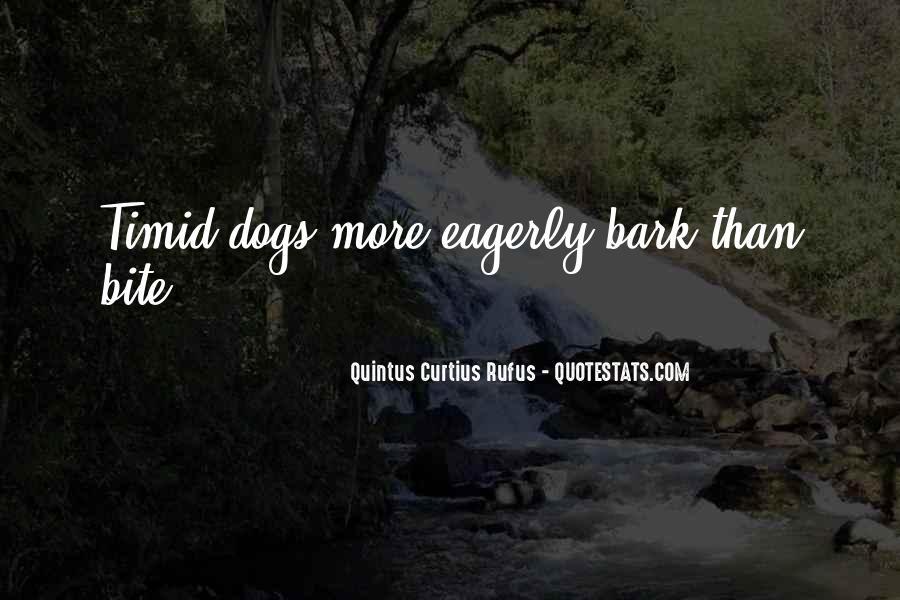 Attitude Abusing Quotes #559155