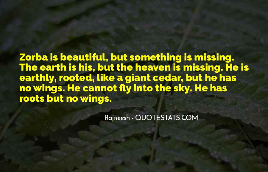 Quotes About Missing Someone Who Is In Heaven #1791904