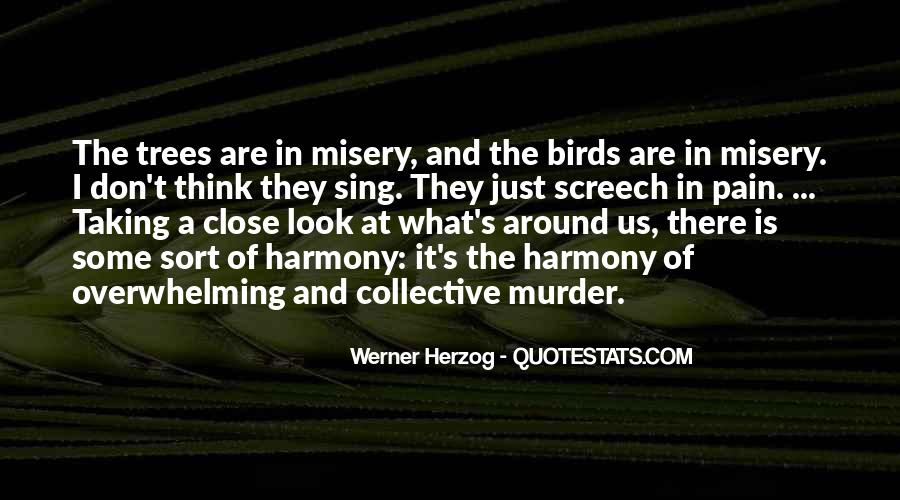 Quotes About Misery And Pain #1180684