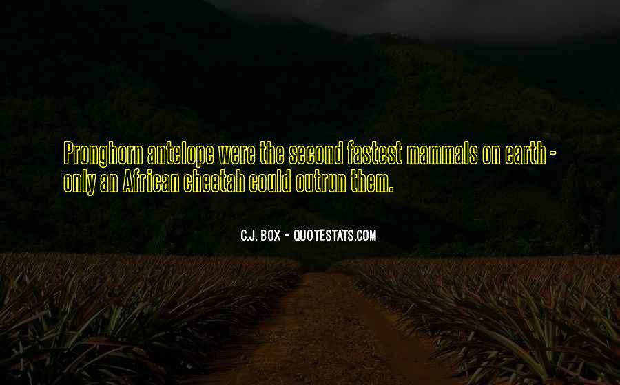 Bakit Masarap Ang Bawal Quotes #799087