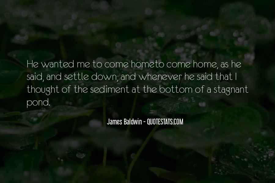 Baldwin James Quotes #56502