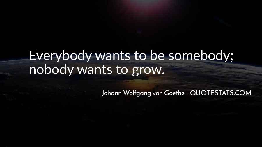 Be Nobody Quotes #42950