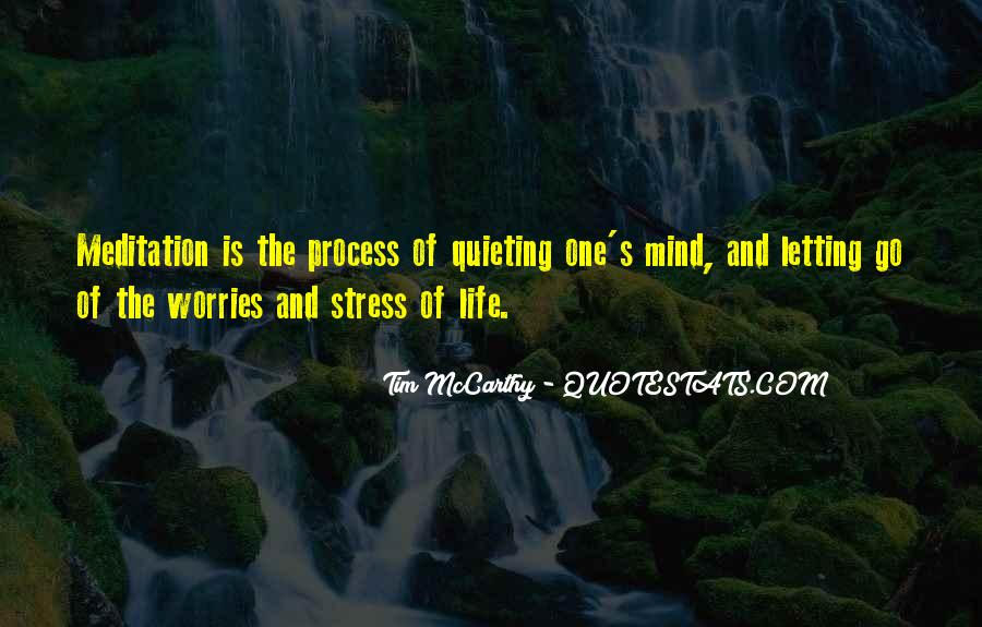 Quotes About Meditation Life #281964