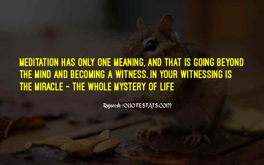 Quotes About Meditation Life #90664