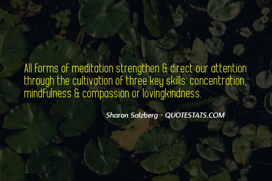 Quotes About Meditaiton #845017