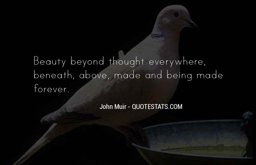 Beauty Beyond Quotes #1413095