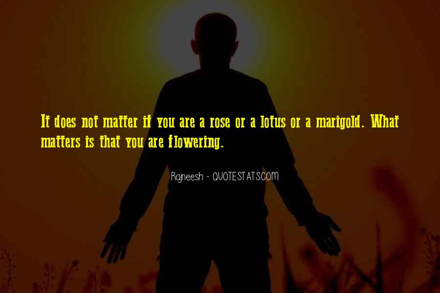 Quotes About Marigold #590650