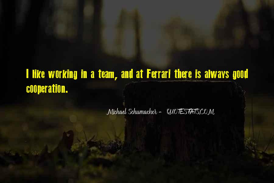 Best Michael Schumacher Quotes #1050696